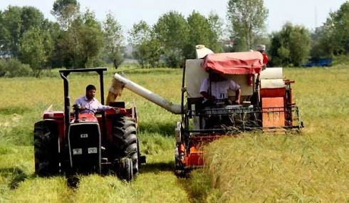 چهل حدیث در باره کشاورزی